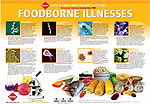Get a free Food Testing Poster
